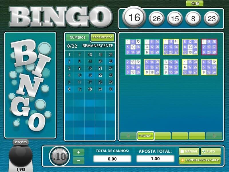 bingo cartelas